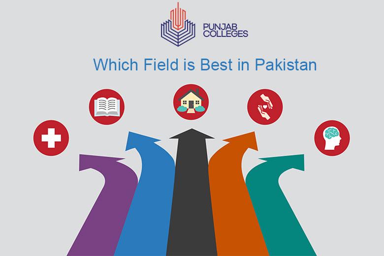 Which Field is Best in Pakistan?