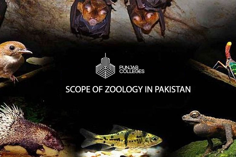 Scope of Zoology in Pakistan